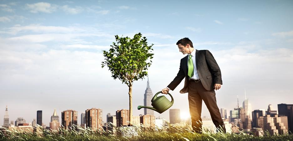 5 dicas essenciais para novos empreendedores